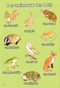 Sample page from Mon Petit Vocabulaire - Brilliant Publications