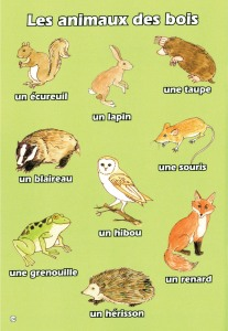 Sample page from Mon Petit Vocabulaire - Brilliant Publications