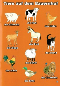 Sample page from Mein Kleines Wörterbuch (My little German dictionary) Brilliant Publications